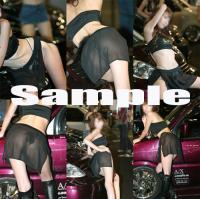sample1113.jpg